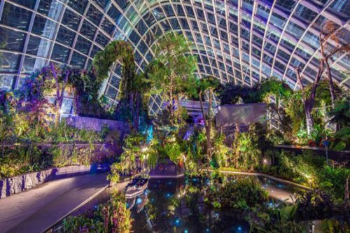 cloud forest garden by the bay