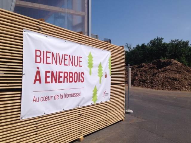 Au coeur de la biomasse en visitant Enerbois