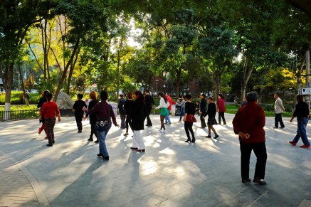 Dance Course in the Park