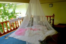 Our Nest @Green House Hostel