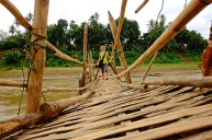 Seasonal Bamboo Bridge