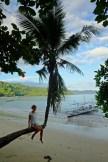 Palmtree Swing