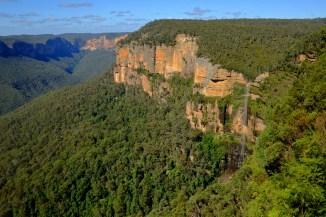 Eucalyptus Cliffs
