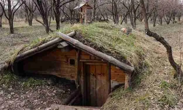 Root Cellar con gas naturali mortali