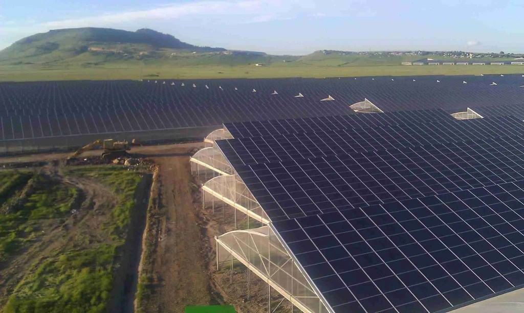 impianti fotovoltaici e sistemi anticaduta - serra fotovoltaica