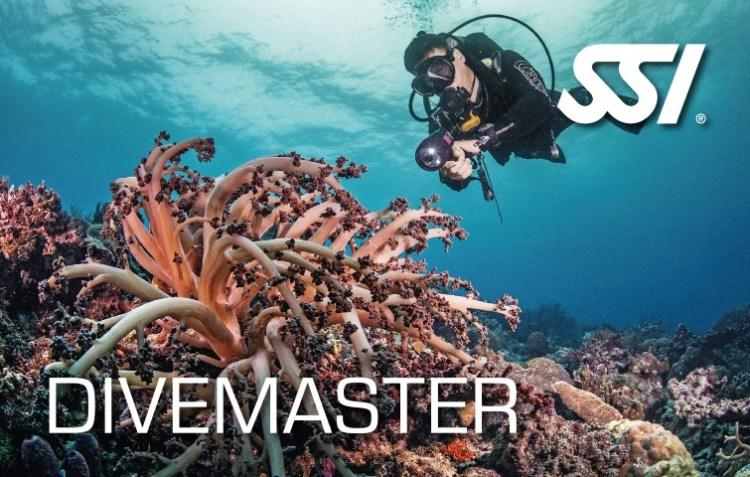Dive Master, SSI, specialty, brevet, divemaster