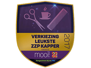 1In2Hair_leukste kapsalon van ede_In2Hair_Golden_Award_2017_
