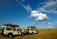 Tips On Taking Children On Safari