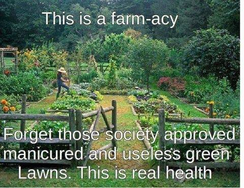 This is a farm-acy.