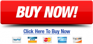 buy-now-credit-card-icons-button