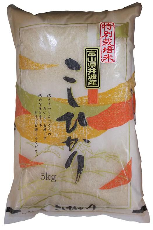 富山県井波産特別栽培米コシヒカリ