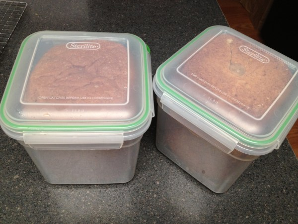 Bread Loaf Storage Container Plastic