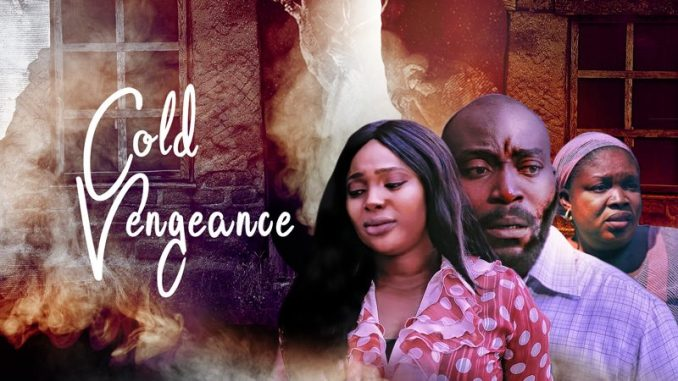 DOWNLOAD: Cold-Vengeance - Nollywood-Movie