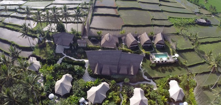 Glamping in Bali: a fusion of camping and luxury