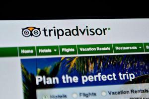 tripadvisor-mslarge_600x400