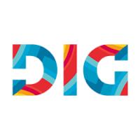 Digital Innovation Group