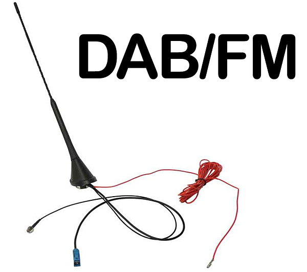 In car DAB aerial plus AM/FM Bee Sting Roof Mounted