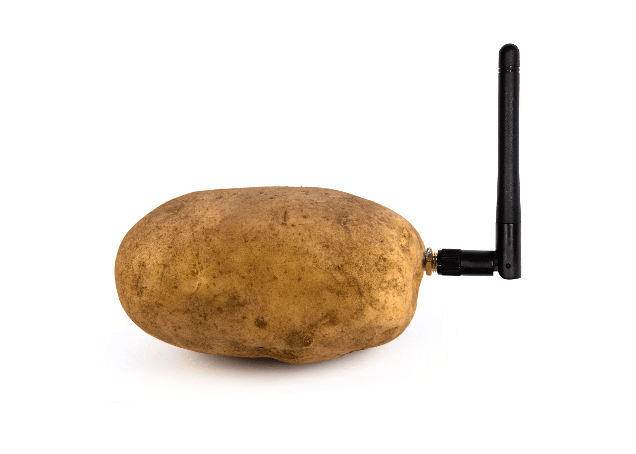 The world's first Smart Potato capable of talking with humans