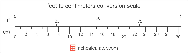 convert feet to centimeters