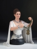 Gentle Giant: Star Wars A New Hope Bust Princess Leia