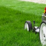 As a College Professor and a Psychotherapist, I've Seen The Damage Lawnmower Parents Can Do To Kids