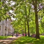 6 Best Colleges for Aspiring Entrepreneurs