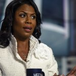 Why Omarosa Manigault Newman's Recordings Should Terrify All Business Owners
