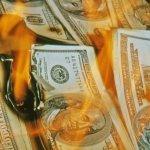 Forest Fires Can Teach Us an Important Lesson About Money in Today's Market