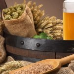 Company Finds a Second Life for Spent Beer Grain