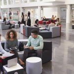 According to Harvard This is the Most Important Characteristic of Your Office, By Far