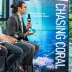 Chasing Coral and Personal Responsibility