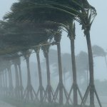 Hurricanes Irma and Harvey Caused U.S. Economy to Lose Jobs in September