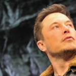 Why Elon Musk's 'Teslaquila' Might Get Into Trouble With Mexico's Tequila Industry