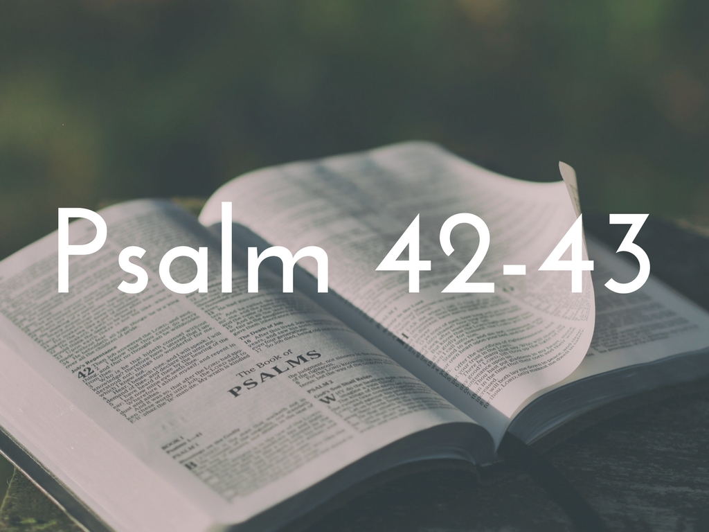 Psalm Study The Gathering
