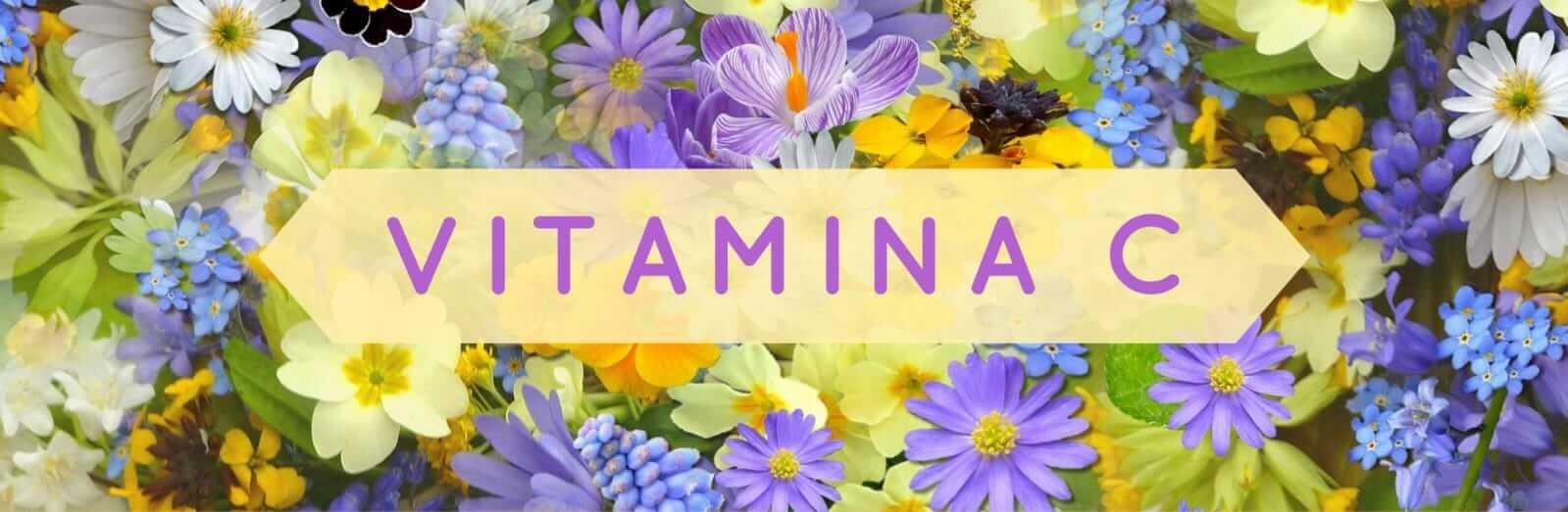 Immagine in evidenza Vitamina C