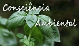 consciencia_ambiental