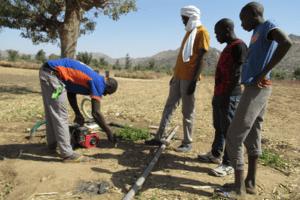 Motopompa in un campo nel comune di Petté, Estremo Nord Camerun