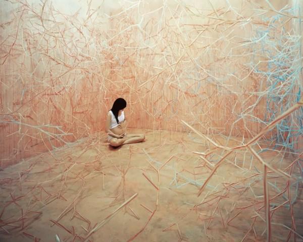 Beautiful Art Works Jeeyoung Lee Incredible Snaps