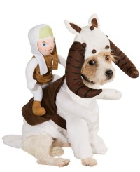 Star Wars Costumes For Your Pup | Incredible Things