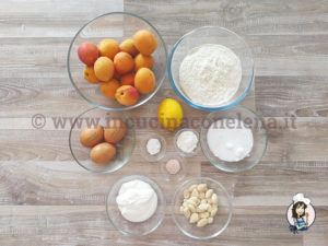 Albicocca Bread