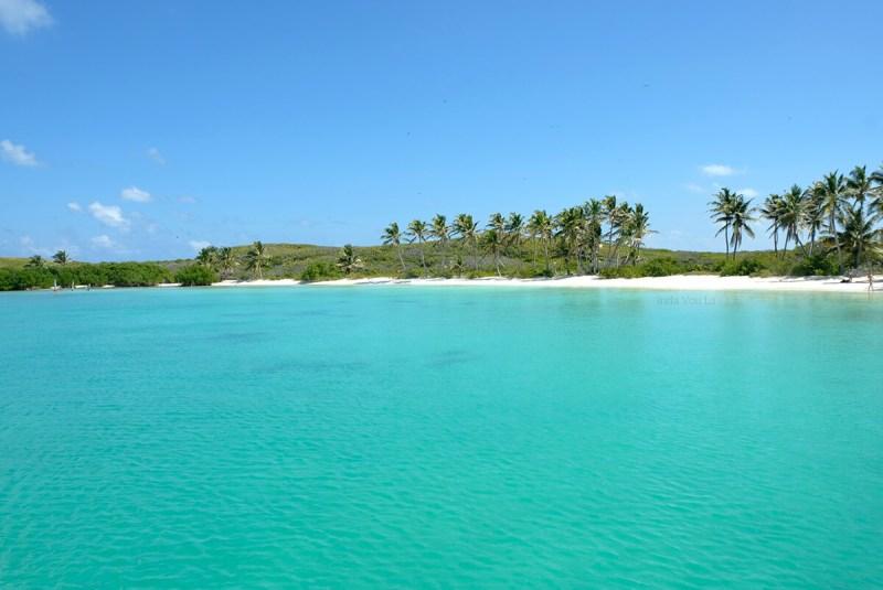 Ilha Contoy - Cancun - México - 1