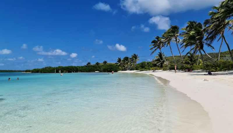 ilha contoy, um dos lugares mais lindos que já visitei