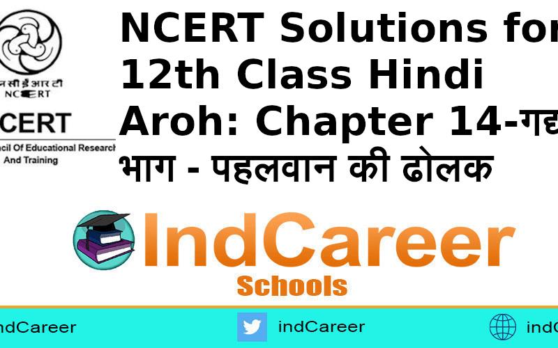 NCERT Solutions for 12th Class Hindi Aroh: Chapter 14-गद्य भाग - पहलवान की ढोलक