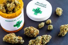 Cannabis terapeutica, la Regione siciliana dispenserà gratis il farmaco