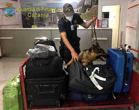 Droga: da Spagna a Catania con 138 gr di eroina, arrestato
