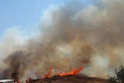 Apocalisse di fuoco in Sardegna. È stato di calamità