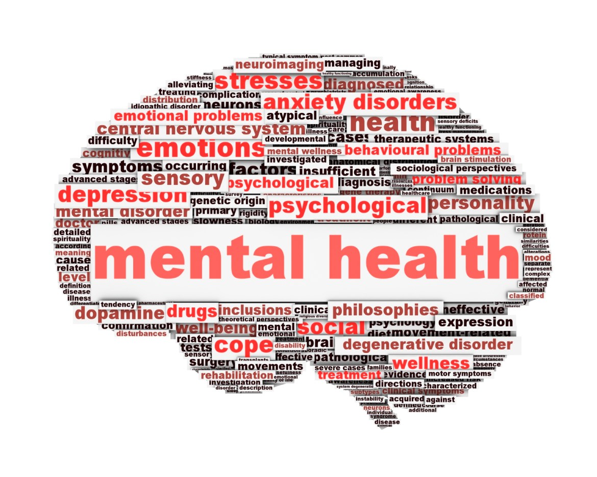Improvement of mental health care in the country