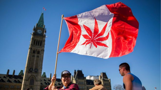 Canada legalises recreational cannabis use