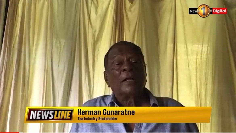 Tea experts warns of calamity to come – Herman Gunaratne on #NewslineSL (03 Sep 2021)