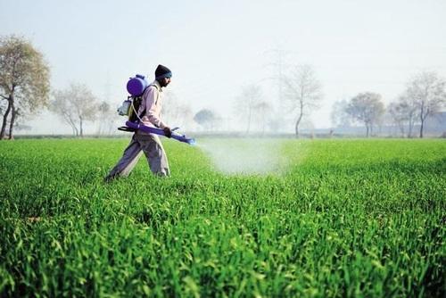 100,000 litres of Nano Nitrogen Fertilizer to SL today